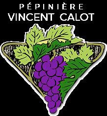 Vincent CALOT